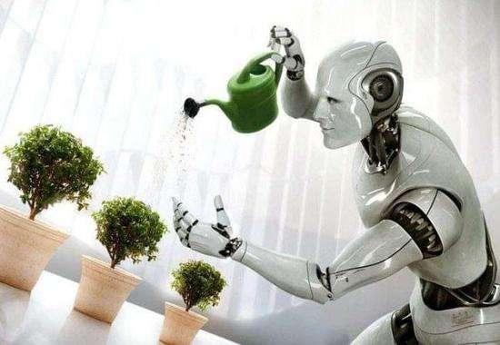 人工智能训练员:AI新老师