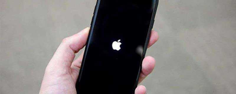 苹果ios14新功能双击背部使手机静音